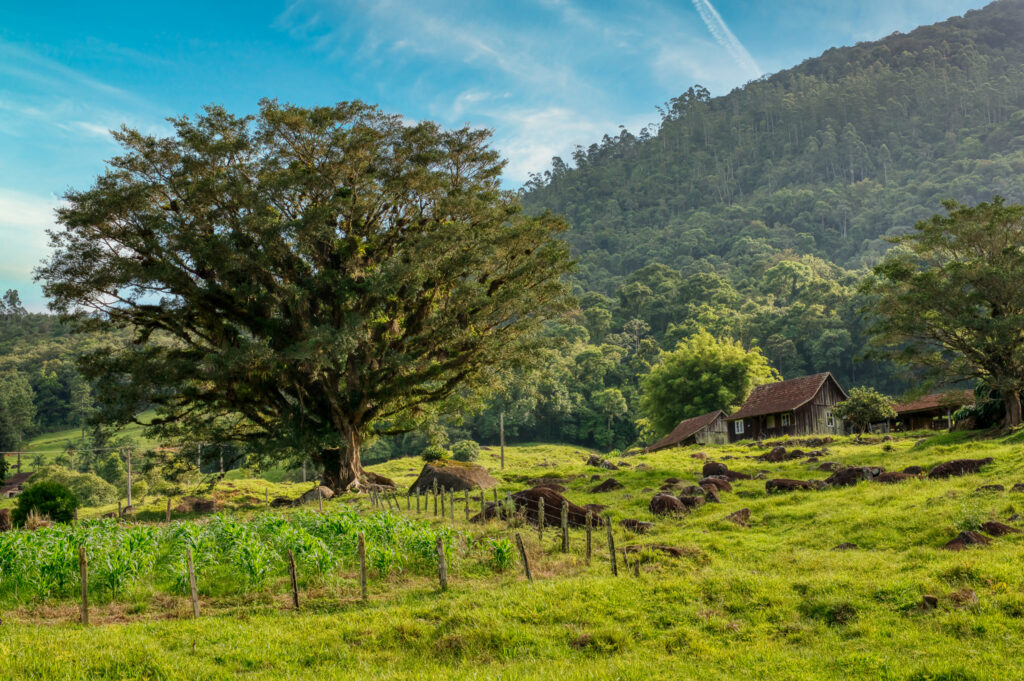 Rota do Enxaimel Vila do Enxaimel Melhores Vilas Turísticas